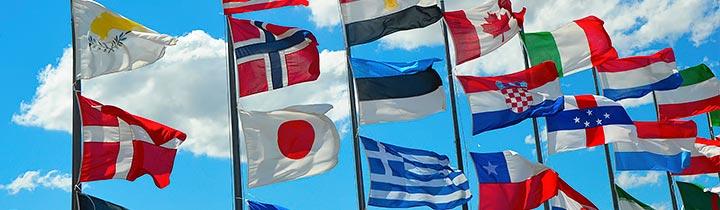 Billede af flag
